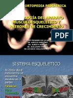 embriologia muscoloesqueletica