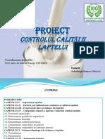 ppt-Usturoi-CCA.pptx