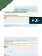 consolidado programacion.pdf