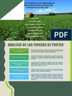 harina de alfalfa.pptx