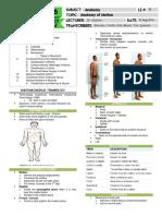 Anatomy 1.01 Anatomy of Motion