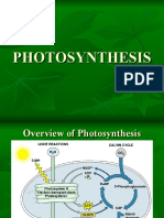 Photosynthesis and factors