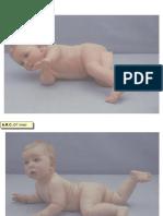 Diapontogenesi 07-09 mesi.ppt
