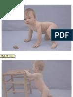 Diapontogenesi 10-12 mesi.ppt