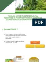 Expocicion PINPEP