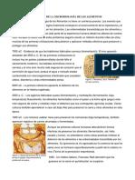 Historia de La Microbiología de Los Alimentos