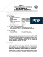 ANEXOS-PPP-II-2019-I-X-CICLO-FINAL.docx