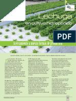 lechugas.pdf