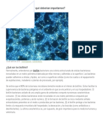 Biofilms bacterianos