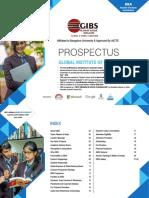 BBA Brochure _ GIBS 2019.pdf