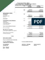 CSPL Balance Sheet 2007
