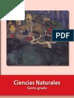 CN-6 3.pdf