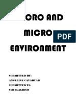 Macro and Micro Environment