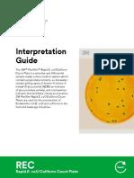 3m Petrifilm Rapid e Coli Coliform Count Plate Interpretation Guide REC