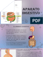 APARATO-digestivo[1]
