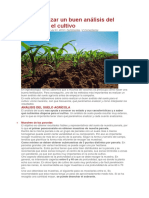 Analisis de cultivos
