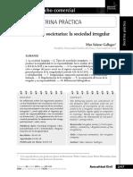 Anomalias_Societarias_La_Sociedad_Irregu.pdf