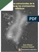 Elementos Estructurales de La Cromatina en los Cromosomas Mitoticos.