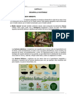 Capitulo I PC Ambiental