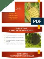 Guanaco Na