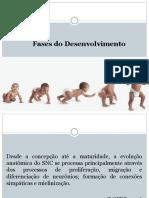 Desenvolvimento Infantil e Desordens