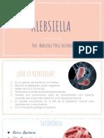Klebsiella (1)