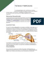 Las Proteínas Fibrosas