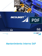 Mantenimiento Interno SAP