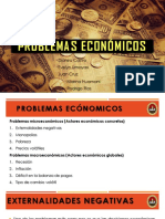 Grupo 10 Problemas Económicos
