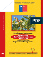 Produccion de Pistacho en zonas de Secano Maule y Bio Bio.pdf