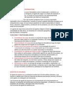 AGENTES DE CARGA INTERNACIONAL.docx