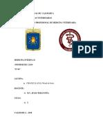 Informe Medicina Interna II c