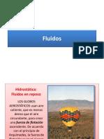 C10 Fluidos.pdf