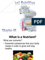 Ch 41 animal nutrition.ppt