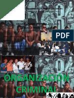 ORGANIZACION CRIMINAL DIAPOSITIVAS.pptx