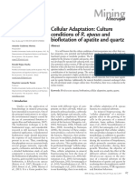 Cellular Adaptation - Culture Conditions of R. Opacus and Bioflotation of Apatite and Quartz
