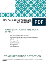 Molecular Mechanism of Toxicity S2