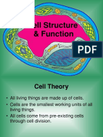 Cell Structure Kgis Grade 11 (1) (1)