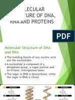 STUDY DNA DNA