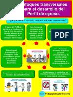 Enfoques Transversales para el desarrollo del Perfil de Egreso DESCARGAR PDF.pdf