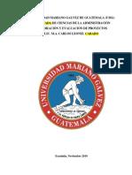 0_D PAN EVALUACION DE PROYECTOS con la tercera parte (MAX)... (1) soni.pdf