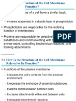 cell membrane structure and  function.ppt