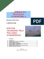U.3 - Efeitos causados pela poluição atmosférica.pdf