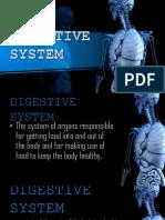 Digestive System of Animals