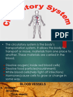 Circulatory System finale.pptx