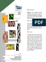 Biosafety Brochure