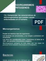 Micro Inmune1