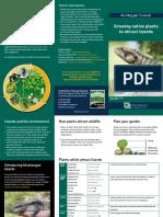 Fauna Friends Brochure Lizards