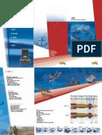 Elbit Systems Lizard Brochure