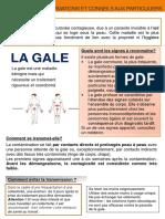 Précision sur la gale, à destination des particuliers (ARS de Bourgogne-Franche-Comté)